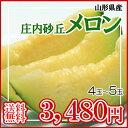 【予約】【送料無料】【庄内 砂丘 メロン4〜5玉(アンデス)】【マスクメロン/Musk Melon】