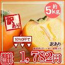 ●【予約】【送料無料】山形産 庄内柿(しょうないがき) 訳あり約5キロ 送料無料★11月上旬頃から順次発送予定