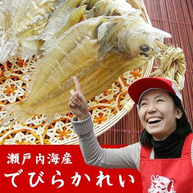 こだわって【国産】瀬戸内海産コノハカレイ使用「でびらかれい」【でべらかれい】【尾道】