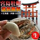 朝獲れ直送 地元広島県民が選ぶ贅沢な新鮮生牡蠣 大越さんの 宮島かき 殻付き&むき身食べ比べ 生牡蠣むき身500g 殻付き牡蛎5個 クール…