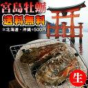 朝獲れ直送 地元広島県民が選ぶ贅沢な新鮮生牡蠣 【広島県産 牡蠣】 大越さんの 宮島かき 生(なま)殻付き20粒(生食用) お届け曜日限定 …