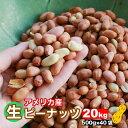 【送料無料】【業務用/まとめ買い】 【無添加 無塩】生落花生 合計20kg (500g×40袋セット) 薄皮付きアメリカ産生ピーナッツ 【訳あり…