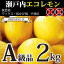 [国産レモン2kg]【送料込み】瀬戸内産 広島瀬戸内レモン(13個-25個)300円割引券付き!皮まで安心して食べれられ…