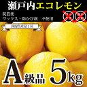 [国産レモン5kg]【送料込み】瀬戸内産 広島瀬戸内レモン(33個-62個)300円割引券付き!皮まで安心して食べれられます【A5】