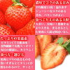 福冈生产博多amao DX-1P超级市场促销商品从12:02到12:07