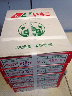 水果hirohayumenoka草莓人箱子
