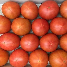 フルーツトマトぐんま産糖度9度以上ブリックスナイン