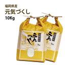 【農家直送】 10kg(5kg×2)【令和2年産 新米(無農薬米) 有機技術】4世代にわたる自慢の米 福岡県産 元気つくし 10kg(5…