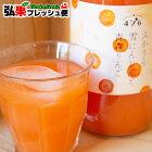 ふかうら雪人参と青森りんごのジュース1000ml×2本セットニンジンりんごミックスジュース100%青森県産