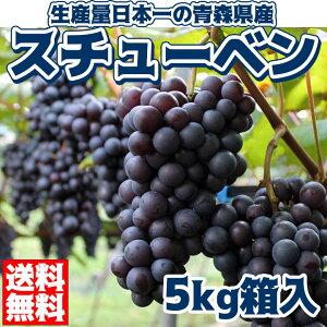 【送料無料】スチューベン5kg青森県産ぶどうブドウ年末年始御歳暮お歳暮ギフト人気弘果ぶどう販売