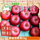 【送料無料】【つがりあんアップル】青森県産りんご【家庭消費用】「大紅栄(だいこうえい)」12〜16個入(約5kg前後)【訳あり】