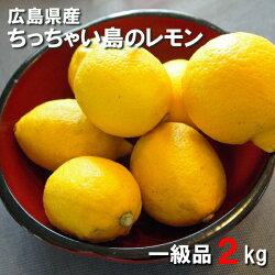 広島県産レモン2kg一級品皮まで食べられますちっちゃい島のレモン【国産レモン】【広島県呉市豊浜狭間農園】