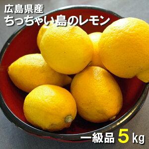 送料無料 広島県産 レモン 5kg 一級品 国産 皮まで食べられます ちっちゃい島のレモン 広島県呉市豊浜