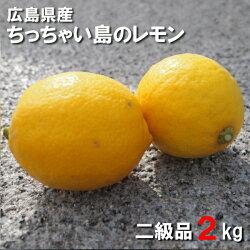 送料無料広島県産レモン2kg二級品国産皮まで食べられますちっちゃい島のレモン広島県呉市豊浜