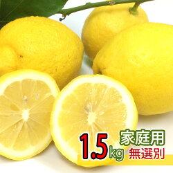 【家庭用】国産広島県大長産レモン約1.5kg防腐剤不使用ノーワックスサイズふぞろいうえがみ農園直送