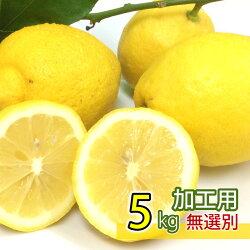【加工用】国産広島県大長産レモン約5kg防腐剤不使用ノーワックスサイズふぞろいうえがみ農園直送