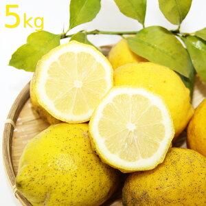送料込み 農園直送 広島県産 レモン 約5kg サイズいろいろ 皮まで食べられます クール便 国産レモン 広島県呉市豊島 竹川農園