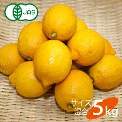 送料無料有機JAS認定無農薬広島県大長産レモン5kgサイズふぞろい農園直送大崎下島下田農園国産皮まで食べられますオーガニック有機栽培