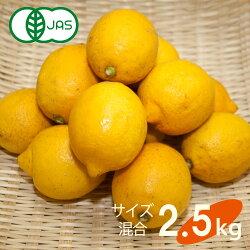 送料無料有機JAS認定無農薬広島県大長産レモン2.5kgサイズふぞろい農園直送大崎下島下田農園国産皮まで食べられますオーガニック有機栽培