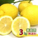 送料無料 家庭用 国産 広島県 大長産 レモン 約3kg 防腐剤不使用 ノーワックス サイズふぞろい うえがみ農園直送