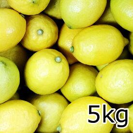 送料込み安心 広島産 レモン 約5kg なかだい 農園直送 サイズいろいろ 皮まで食べられます クール便 広島ブランド 特別栽培農産物認定レモン 国産レモン 呉市大崎下島 大長のレモン