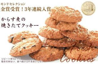 モーツアルトからす麦の焼きたてクッキー40枚入り個包装バッケンモーツアルト