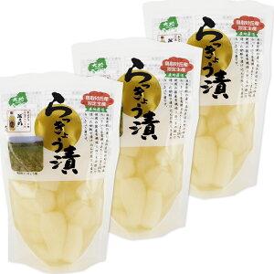 鳥取砂丘産 らっきょう漬 130g 3袋セット 送料無料 センナリ 米酢 鳥取県