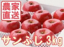 産地直送送料込み福島県産りんごサンふじ3kg贈答用林檎【ふるーつネットワーク】