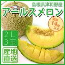 島根県産 津和野メロン 産地直送 糖度保証14度以上 アールスメロン 2L 3個入り 1玉1.7kg以上 津和野メロンパーク