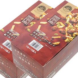 送料無料 ナッツスナッキング TP カカオニブ アーモンド&フルーツ 17g 1箱12袋入 2箱セット グルテン不使用 おつまみ