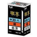 職専 替刃 SS−50目透かし(50枚X10)