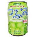 【送料無料(一部地域除く)】 サンガリア つぶみ白ぶどう280g缶 72本 (3ケース)