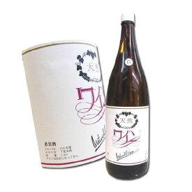 岐阜 白ワイン 天然葡萄酒 NAGARA やや甘口 1800ml 自然発酵 蔵酵母 無添加 【あす楽】