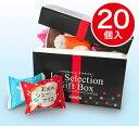 [送料込]ヒロタのシューアイス20個入詰合せ [10種類][洋菓子のヒロタ][HIROTA][ヒロタ][スイーツ][洋菓子][シューアイ…