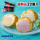 シューアイス スイーツ アイス 詰め合わせ 22個入 9種類 洋菓子のヒロタ HIROTA アイスクリーム おやつ デザート バニラ チョコレート 苺 抹茶 ラムレーズン クッキー&クリーム カスタード ヨーグルト レモン 送料込
