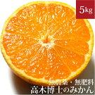 高木博士のみかん5kg自然栽培(無農薬・無肥料)愛媛県産