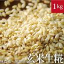 自然栽培玄米麹1kg