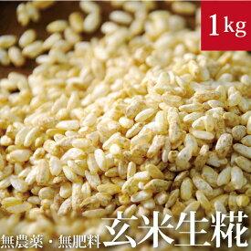自然栽培 玄米麹 1kg