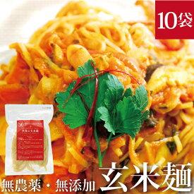 HIRYUの玄米麺 100g×10pc 玄米パスタ