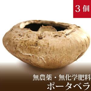 ポータベラ ジャンボマッシュルーム 3個 直径約12cm 国産 無農薬・無化学肥料