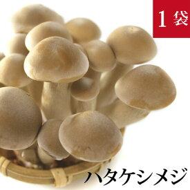 ハタケシメジ(丹波しめじ) 1袋 150g 国産 無農薬・無化学肥料