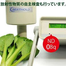 小松菜1袋1kg無農薬・無化学肥料還元力(抗酸化力)ORP+12mV