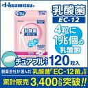 【定期購入・初回・継続お得!】 乳酸菌 EC-12 チュアブル 120粒