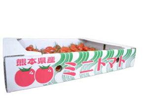 九州産 ミニトマト(S〜L 約3kg)【減農薬 低濃度】 ミニトマト/ミニとまと/みにとまと/トマト/塩トマト/塩とまと/フルーツトマト/とまと/