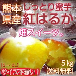 熊本県産 紅はるか ※送料無料!/紅ハルカ/ベニハルカ/紅はるか/九州産/市場直送/蜜芋/みついも/ミツイモ/しっとり系/上品な甘さ。