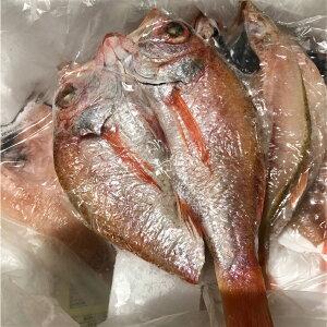高級魚 きんきの開き 一夜干し きんき 干物 吉次 2枚入荷の中で大きいサイズ 取り寄せ お取り寄せギフト プレゼント お歳暮 御中元 贈答品