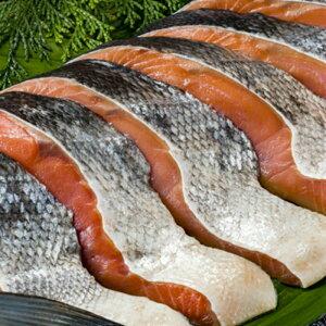 鮭 3枚 シャケ甘塩 シャケ しゃけ 切り身 厚切り 当店人気の鮭 鮭の切り身 切りたて 厚切り 食べ応え抜群 当店星5がついてる鮭の切り身 ご自宅用に