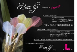 BarLip【バーリップハウスダーツHOUSEDARTS国産チップソフトダーツ