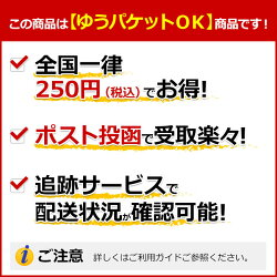TARGET(ターゲット)RISINGSUN2.1(ライジングサン2.1)2BA100736村松治樹選手モデル(ソフトダーツダーツバレルタングステンダーツセットダーツターゲット)