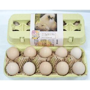 純系烏骨鶏の平飼い有精卵10個入〈※未洗卵・孵化用での発送は楽天市場店では対応しておりません〉